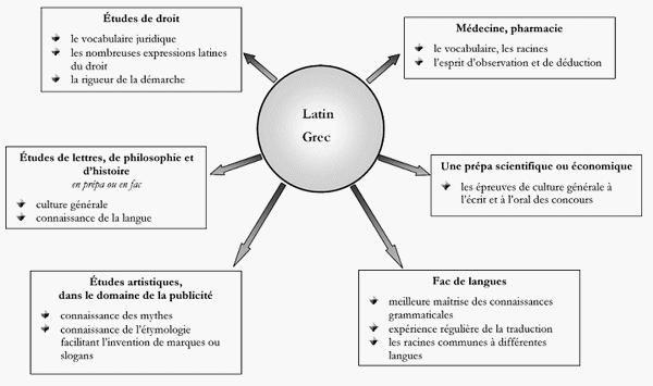 les racines grecques et latines - Intellegofr
